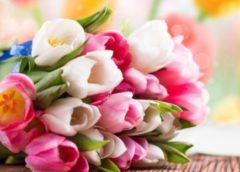 Услуга доставки цветов от интернет-магазинов нашей компании